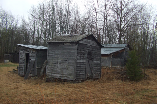 cabiniii